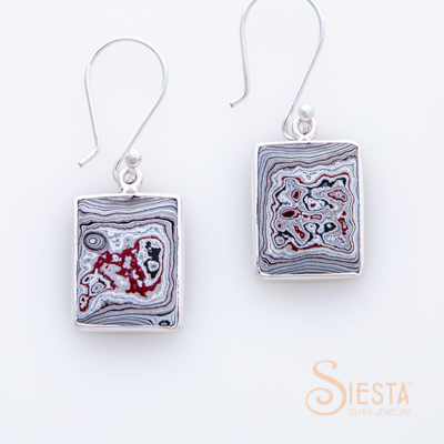 Siesta Sterling Silver Fordite Earrings on Hook